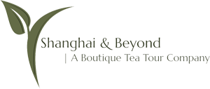 Shanghai and Beyond Logo